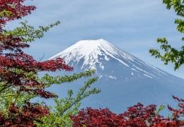 Fuji Pixabay