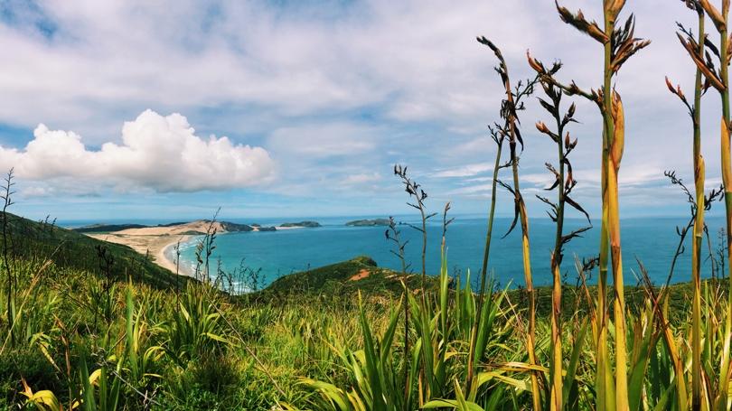 Te Rerenga Wairua: Leaping Off Place of Spirits